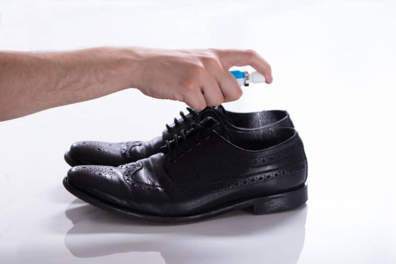 Best Shoe Deodorizer
